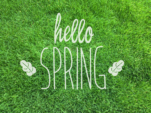 Spring has arrived! Read our News Update.