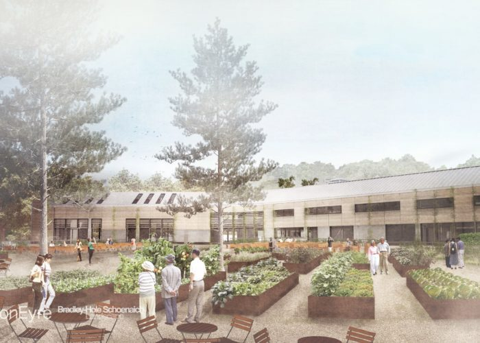 Helping the RHS create a greener future